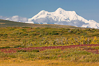 Mt. Hayes and autumn tundra foreground, Alaska Range mountains.