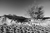 Posto Vecchio - Marina di Salve - Salento. stralci di pomeriggio attorno al mare d'inverno. Dune.