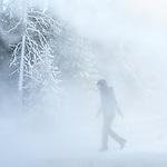 Yellowstone winter is amazing.