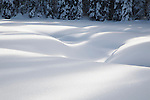 Deep snow in a mountain meadow looks like a soft pillow as it covers the uneven surface of the meadow.