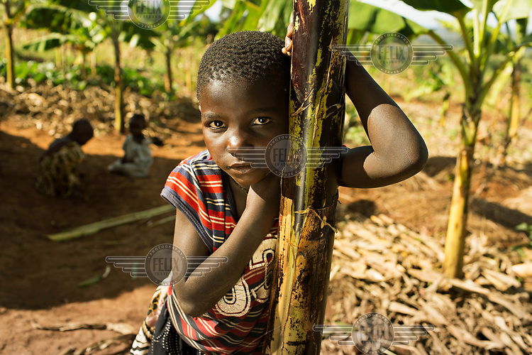Christine (5) leans on a banana stem on land farmed by her mother.