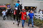 February 21, 2015: St Joe Bay with Floreny Geroux up in the Risen Star Stakes at the New Orleans Fairgrounds Risen Star Stakes Day. Steve Dalmado/ESW/CSM