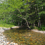 This is the image for May in the 2014 White Mountains New Hampshire calendar. Pemigewasset Wilderness - Franconia Brook in Franconia, New Hampshire USA. Purchase the calendar here: http://bit.ly/1audUBp .