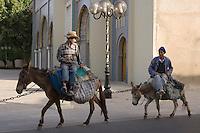 Afrique/Afrique du Nord/Maroc/Fèz: Médina de Fèz-El-Bali devant le palais royal deux porteurs passent avec leurs anes et leurs mulets qui servent au transport des marchandises