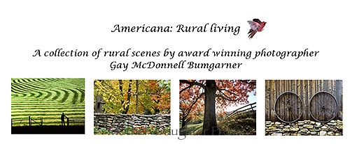 Rural living card set