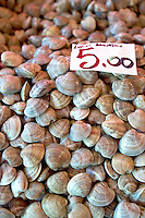 Fresh Sea Food & Fish - Chioggia - Venice Italy