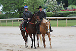 HOT SPRINGS, AR - APRIL 14:  Discreetness, winner of the Smarty Jones Stakes, walks down the stretch alongside trainer Jinx Fires at Oaklawn Park on April 14, 2016 in Hot Springs, AR. (Photo by Ciara Bowen/Eclipse Sportswire/Getty Images)
