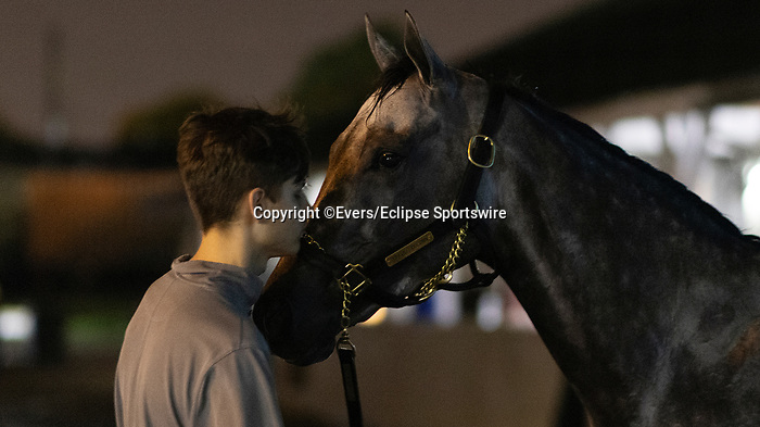 April 29, 2021: Travel Column gets a bath at Churchill Downs in Louisville, Kentucky on April 29, 2021. EversEclipse Sportswire/CSM