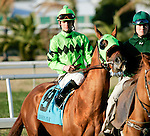 Feb 2010:  Stay Put and Jamie Theriot before the Risen Star Stakes at the Fairgrounds in New Orleans, La.