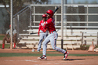 Cincinnati Reds outfielder Nate Scantlin (28) during a Minor League Spring Training game against the Chicago White Sox at the Cincinnati Reds Training Complex on March 28, 2018 in Goodyear, Arizona. (Zachary Lucy/Four Seam Images)