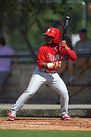 Philadelphia Phillies Reginald Wilson (23) during an instructional league game against the Toronto Blue Jays on October 3, 2015 at the Carpenter Complex in Clearwater, Florida.  (Mike Janes/Four Seam Images)