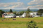 Village of Mazeppa, PA. Union County