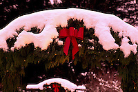 Butchart Gardens, Brentwood Bay near Victoria, Vancouver Island, BC, British Columbia, Canada - Red Christmas Bow on Snow Covered Coniferous Branch