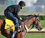 Santiva, trained by Eddie Kenneally, exercises in preparation for the 137th running of the Kentucky Derby at Churchill Downs in Louisville, Kentucky to be run May 7, 2011.