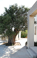 PARAVALOU HOUSE..As one of the largest private homes on Mykonos in Greece, this property boasts two churches, private heliport, olympic-sized swimming pool and manicured Japanese gardens.  The house is filled with contemporary artworks by famous Greek artist Vassilikis well as others..