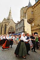 Concours de derobee 2009, cercle de Saint-Evarzec