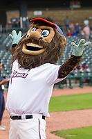 Northwest Arkansas Naturals mascot Strike before the game on May 1, 2019, at Arvest Ballpark in Springdale, Arkansas. (Jason Ivester/Four Seam Images)