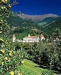 Italy, South-Tyrol, Alto Adige, Vinschgau (Val Venosta), Castle Coldrano and apple trees, orchard | Italien, Suedtirol, Vinschgau, Schloss Goldrain, Apfelbaeume