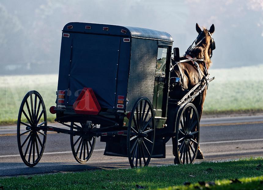 Amish buggy, Ronks, Lancaster County, Pennsylvania, USA
