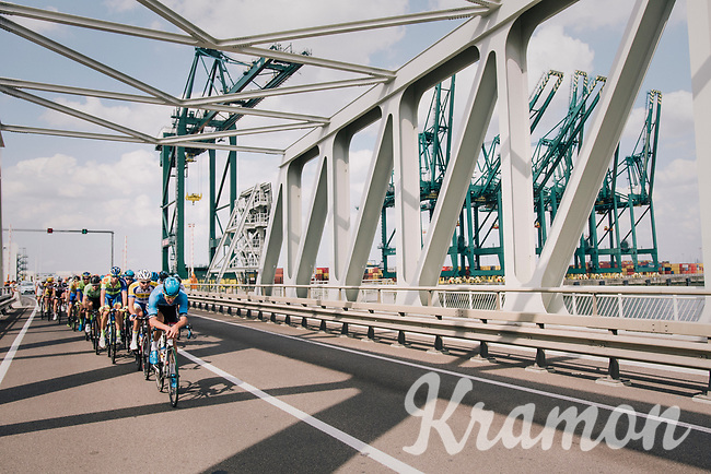 """peloton racing through the Port of Antwerp<br /> <br /> Antwerp Port Epic 2018 (formerly """"Schaal Sels"""")<br /> One Day Race:  Antwerp > Antwerp (207 km; of which 32km are cobbles & 30km is gravel/off-road!)"""