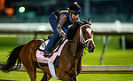 April 27, 2021: Malathaat gallops at Churchill Downs in Louisville, Kentucky on April 27, 2021. EversEclipse Sportswire/CSM