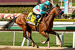 ARCADIA, CA  MARCH 7: #4 Authentic, ridden by Drayden Van Dyke, in the stretch of the San Felipe Stakes (Grade ll) on March 7, 2020, at Santa Anita Park in Arcadia, CA. (Photo by Casey Phillips/Eclipse Sportswire/CSM