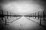 Snow covered road leading to the gas chambers at  Auschwitz II-Birkenau concentration camp Sunday Dec 28 2014. Auschwitz concentration camp was a network of German Nazi concentration camps and extermination camps built and operated by the Third Reich in Polish areas annexed by Nazi Germany during World War II, the camp was liberated on January 27, 1945 by Soviet troops. Photo By Eyal Warshavsky