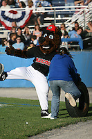 July 4, 2009:  Batavia Muckdogs mascot Homer during a game at Dwyer Stadium in Batavia, NY.  The Muckdogs are the NY-Penn League Short-Season Class-A affiliate of the St. Louis Cardinals.  Photo By Mike Janes/Four Seam Images