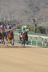#2 Taris (KY) with jockey Clinton L. Potts aboard during the running of the Honeybee Stakes (Grade III) at Oaklawn Park in Hot Springs, Arkansas-USA on March 8, 2014. (Credit Image: © Justin Manning/Eclipse/ZUMAPRESS.com)