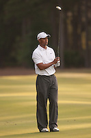 PONTE VEDRA BEACH, FL - MAY 6: Tiger Woods ready to hit his next shot on the 11th fairway during his practice round on Wednesday, May 6, 2009 for the Players Championship, beginning on Thursday, at TPC Sawgrass in Ponte Vedra Beach, Florida.
