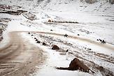 Vor allem in den Dörfern und den abgelegenen Landesteilen ist<br />das Elend in Moldawien noch immer immens. Tausende kämpfen,<br />vor allem in den Wintermonaten um das nackte Überleben, jeden<br />Tag aufs neue geht es darum das Nötigste an Verpflegung zur<br />Verfügung zu haben und ein bisschen zu heizen, um nicht zu<br />erfrieren. Von dieser prekären Situation merken viele Besucher, die<br />nach Chisinau kommen, auf den ersten Blick nichts, bereits einige<br />Kilometer außerhalb ändert sich die Situation bereits deutlich…// Moldova is still the poorest country of Europe. Hopes to join the European Union are high. After progress in the past years tuberculosis is on the rise again. The number of new patients raise since 2010 and is on a level that has not been reached since the late 90s.
