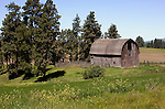 Extending from Washington into Idaho, the famous Palouse region serves up landscapes such as this aging barn in the foothills of the Palouse Range, Latah County, Idaho.