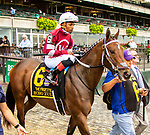 OCT 03, 2021: ECHO ZULU post parade in  Gr.1  Frizette Stakes, for 2 year old fillies, at Belmont Park, Elmont, NY.  Sue Kawczynski/Eclipse Sportswire/CSM