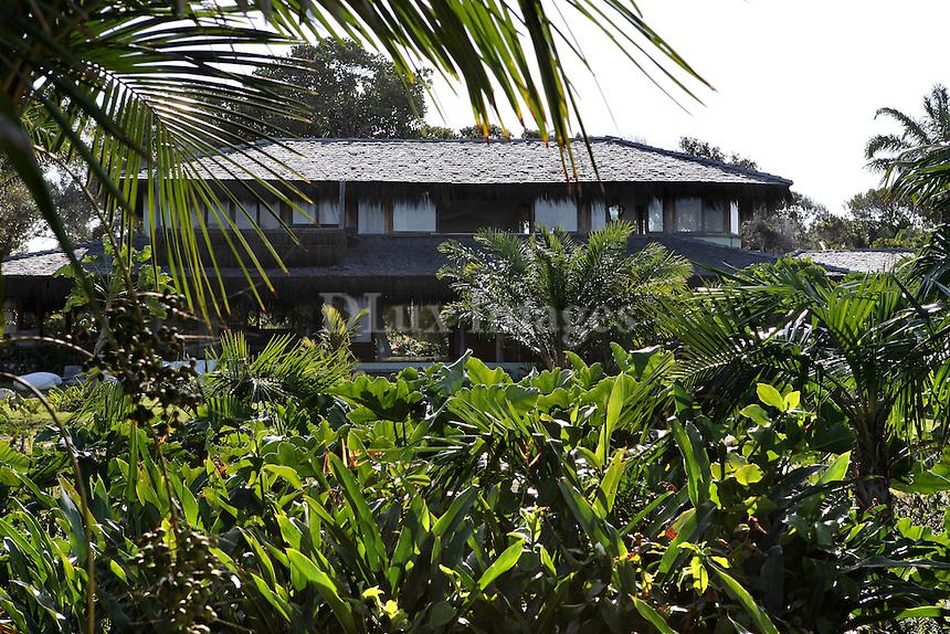 tropical green yard