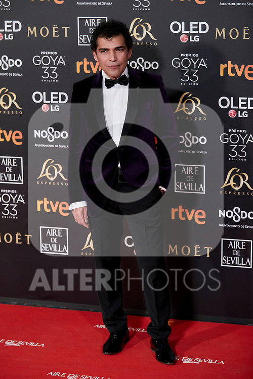 Vladimir Cruz attends to 33rd Goya Awards at Fibes - Conference and Exhibition  in Seville, Spain. February 02, 2019. (ALTERPHOTOS/A. Perez Meca)