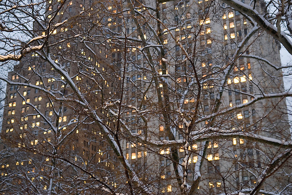 "Detail of The Woolworth Building (on the right side of the frame) Viewed Thru Snow Covered Trees Illuminated at Dusk, City Hall Park, Civic Center, Lower Manhattan, New York City, New York State, USA..<br /> <br /> The Woolworth Building at 233 Broadway was completed by the architect Cass Gilbert in 1913.  Built in the Neo-Gothic style with terra cotta detail, it was the tallest building in the world  (792 ft. high) until it was supersceded by The Chrysler Building on 42nd Street in 1930.  The building was the headquarters of the F.W. Woolworth and Co. chain of Five and Dime Stores.  When the building opened it was dubbed ""The Cathedral of Commerce"" by the Brooklyn minister and radio evangelist Rev. S. Parkes Cadman."