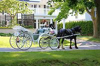 Horse & Buggy wait for a fair at Niagara on the Lake