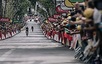 Edvald Boasson Hagen (NOR/Dimension Data) solo's to the win!<br /> <br /> 104th Tour de France 2017<br /> Stage 19 - Embrun › Salon-de-Provence (220km)