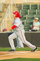 Shawn Pleffner (29) of the Hagerstown Suns follows through on his swing against the Kannapolis Intimidators at CMC-Northeast Stadium on May 17, 2013 in Kannapolis, North Carolina.  The Suns defeated the Intimidators 9-7.   (Brian Westerholt/Four Seam Images)