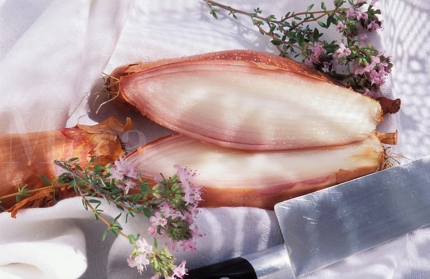 Shallots and fresh thyme.  The large torpedo shaped shallots popular in France..
