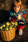 Usti nad Labem, Czech Republic. Young girl eating a pear, next to a basket full of pears.