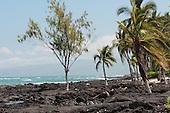 Lava Shore