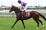 October 01, 2017, Chantilly, FRANCE - Happily with Ryan Moore up at parade canter at the Qatar Prix Jean-Luc Lagardere (Grand Criterium) (Gr. I) at  Chantilly Race Course  [Copyright (c) Sandra Scherning/Eclipse Sportswire)]