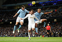 Barclays Premier League, Man City (blue) V Swansea City (white) Etihad Stadium, 27/10812<br /> Pictured: Nastastic and Kompany keep Graham grounded<br /> Picture by: Ben Wyeth / Athena Picture Agency