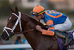 November 2, 2019: Vino Rosso, ridden by Irad Ortiz, Jr., wins the Longines Breeders' Cup Classic on Breeders' Cup World Championship Saturday at Santa Anita Park on November 2, 2019: in Arcadia, California. Carolyn Simancik/Eclipse Sportswire/CSM