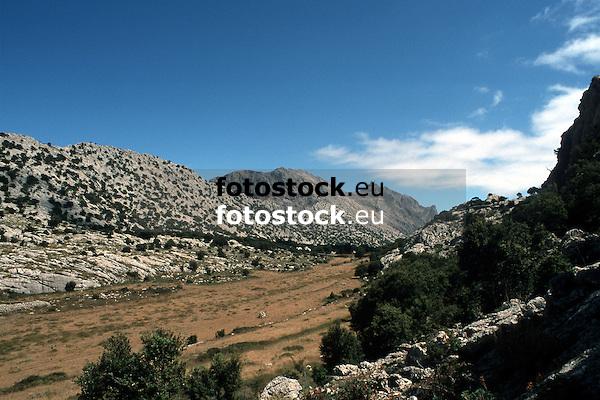 Valley in the Tramontana mountains with view to the highest mountain of Majorca, Puig Major (1.445 m)<br /> <br /> Valle en la Sierra de Tramontana (cat.: Serra de Tramuntana) con vista al monte más alto de Mallorca, Puig Major de Son Torrella (1145 m)<br /> <br /> Tal im Tramontana Gebirge mit Blick zum höchsten Berg Mallorcas, Puig Major (1445 m)<br /> <br /> 3079 x 2050 px<br /> Original: 35 mm slide transparancy