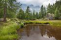 Mountain lake, Aosta Valley, Monte Rosa Massif, Pennine Alps, Italy. July.
