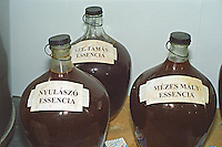 "The Royal Tokaji Wine Company: Glass demijohns with slowly fermenting Tokaj Eszencia (essencia), the extremely concentrated sweet essence of Tokaj. With vineyard denominations: Nyulaszo, Szt. Tamas (Saint Thomas) and Mezes Maly. The RTWC in was one of the first Tokaj wineries to be ""revived"" by an injection of foreign capital. It makes wine in a traditional style. Credit Per Karlsson BKWine.com"