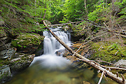 Cascade along Cold Brook in Randolph, New Hampshire during the summer months. This is possibly the forgotten Secunda Cascade.