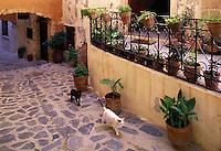 Two cats, black and white, roam a narrow backstreet in Hania. Crete, Greece.